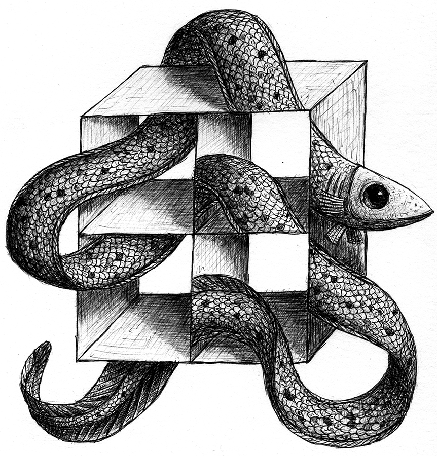 ellusion062