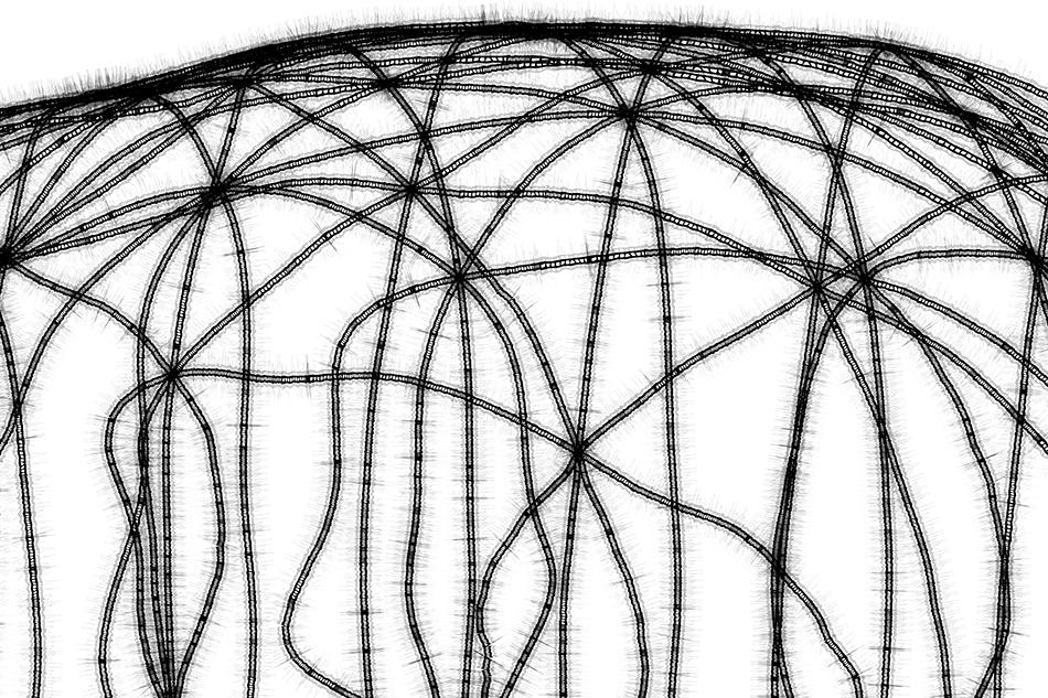 konsttruktion-würfel-wie-emulsfiere-schwarzeneggeruntitledsmdetail